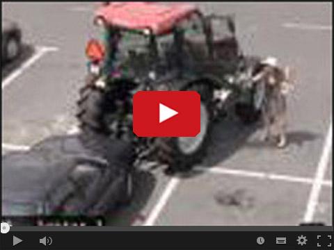 Przyjechała na zakupy traktorem