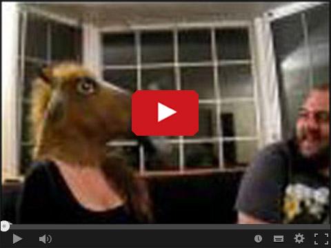 Koń który imprezował i palił z bongo