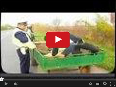 Koń policja i pijany dorożkarz