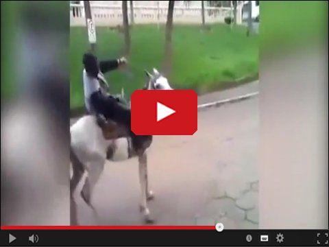 Pijany jezdziec na koniu