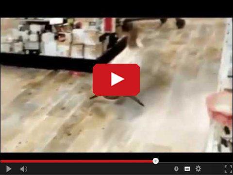 Ryba pływająca po sklepie między regałami