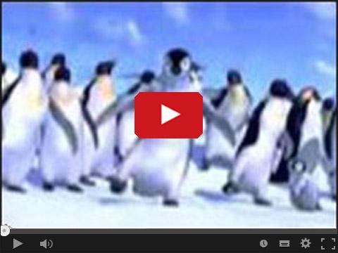 Tupot małych stóp - Taniec pingwinów
